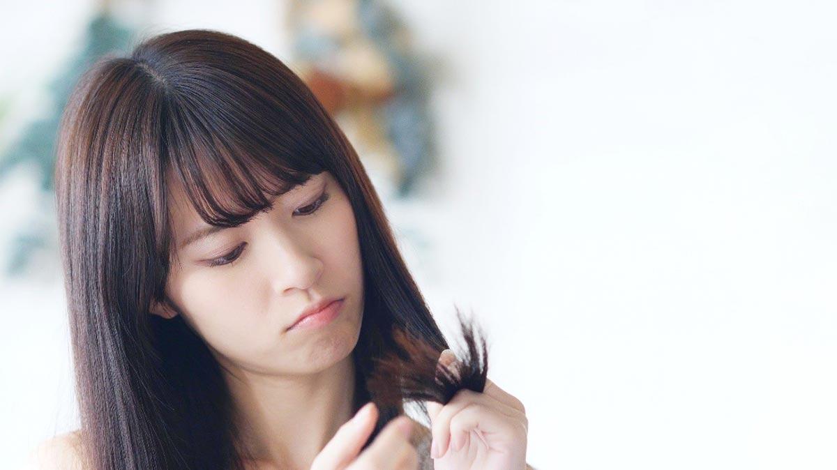 美髪の毛の敵!枝毛・切れ毛の原因